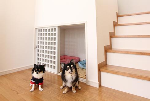 ペットと暮らすスキップフロアのある家